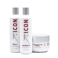 Logo Regimedy Antioxidants I.C.O.N. Products