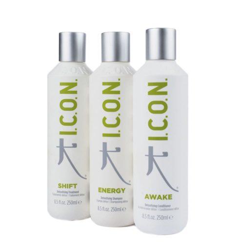 Regimedy Detox | I.C.O.N. Products
